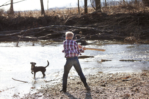 Rear view of teenage boy playing with dog by river - CAVF09662