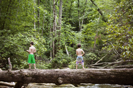 Rear view of brothers fishing while standing of fallen tree trunk in forest - CAVF09863