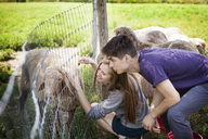 Woman stroking sheep while crouching by fence in farm - CAVF09914