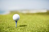 Golf ball on tee - CAIF19557