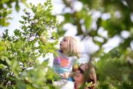 Mother carrying daughter picking blueberries from tree at farm - CAVF10442
