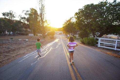 Rear view of sibling walking on road - CAVF11004