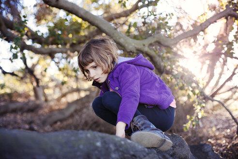 Girl climbing on fallen tree in forest - CAVF11088