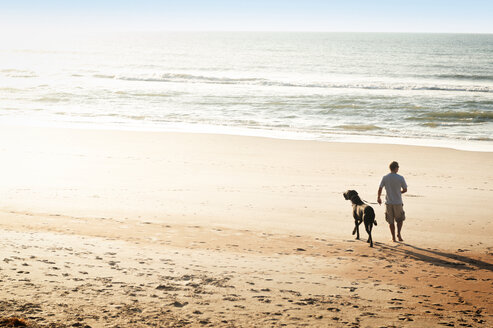 Rear view of man with dog walking at beach - CAVF11247