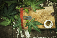 Overhead view of Cannabis leaves and blade on table - CAVF11373