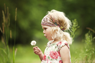 Girl blowing dandelion while standing on field - CAVF11424