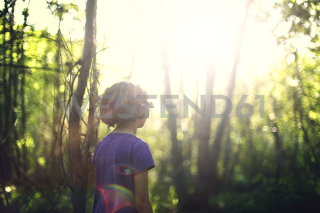 Rear view of girl standing in forest on sunny day - CAVF11712