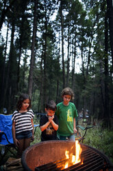 Siblings standing by fire pit in forest - CAVF11784