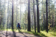 Male hiker with backpack walking by trees in forest - CAVF12962