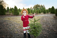 Portrait of girl holding Christmas tree at field - CAVF13166