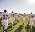 Rear view of American football players walking on field against clear sky - CAVF14006