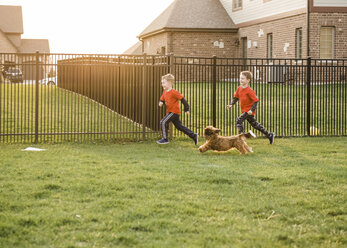 Playful brothers running with dog against fence in yard - CAVF14579