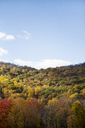Idyllic view of autumn trees against blue sky - CAVF15014