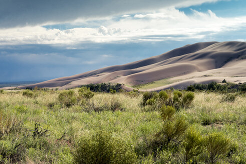 Idyllic view of desert against cloudy sky at Great Sand Dunes National Park with plants on field in foreground - CAVF15595