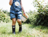 Low section of girl with container standing on grassy field at raspberry farm - CAVF15817
