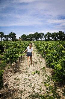 Rear view of woman walking on pathway in vineyard against sky - CAVF16084