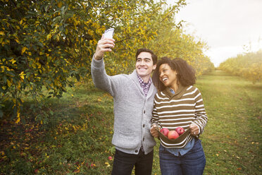 Man taking selfie while standing with girlfriend carrying apples in orchard - CAVF17774