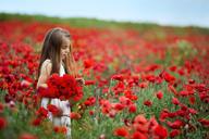 Girl holding bunch of red poppy flowers in field - CAVF17809