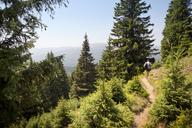 Rear view of man walking on mountain - CAVF17812