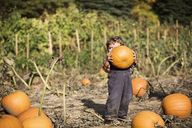 Boy carrying pumpkin while standing on field - CAVF18940