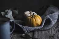 Pumpkins with napkin on wooden on table - CAVF19606