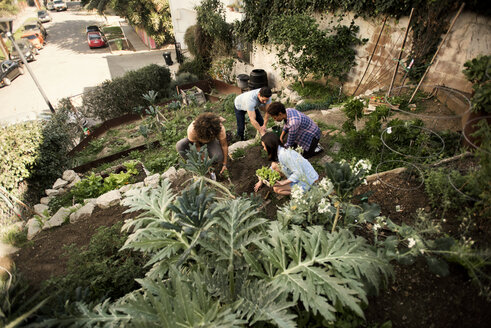 High angle view of friends gardening at community garden - CAVF19951