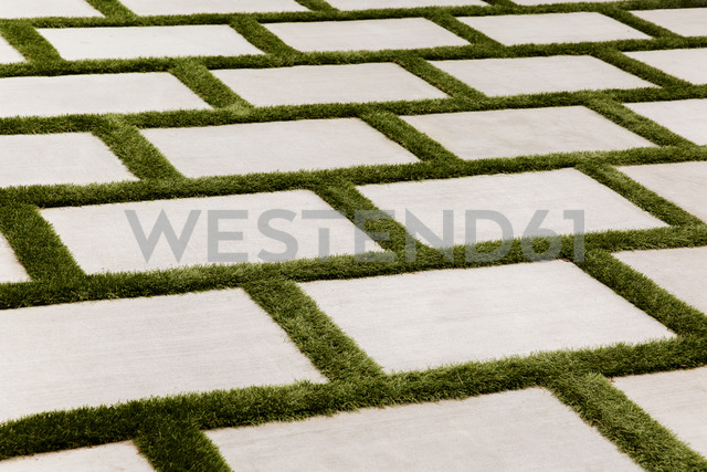 Close-up of grass growing on pavement - CAVF20650