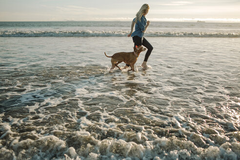 Playful woman running with dog in waves on shore at beach during sunset - CAVF21877