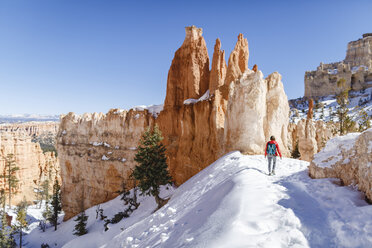 Rear view of hiker walking on snow covered mountain at Bryce Canyon National Park - CAVF22570
