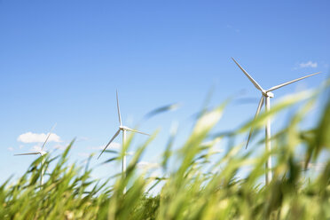 Wind turbines on grassy field against blue sky - CAVF22669