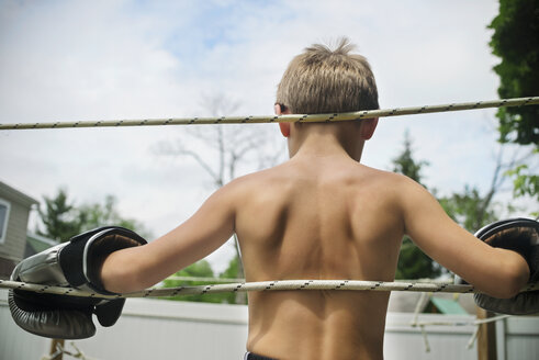 Rear view of boy leaning on ropes in boxing ring - CAVF23245