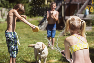 Rear view of girl spraying water on dog and friends at backyard - CAVF23251