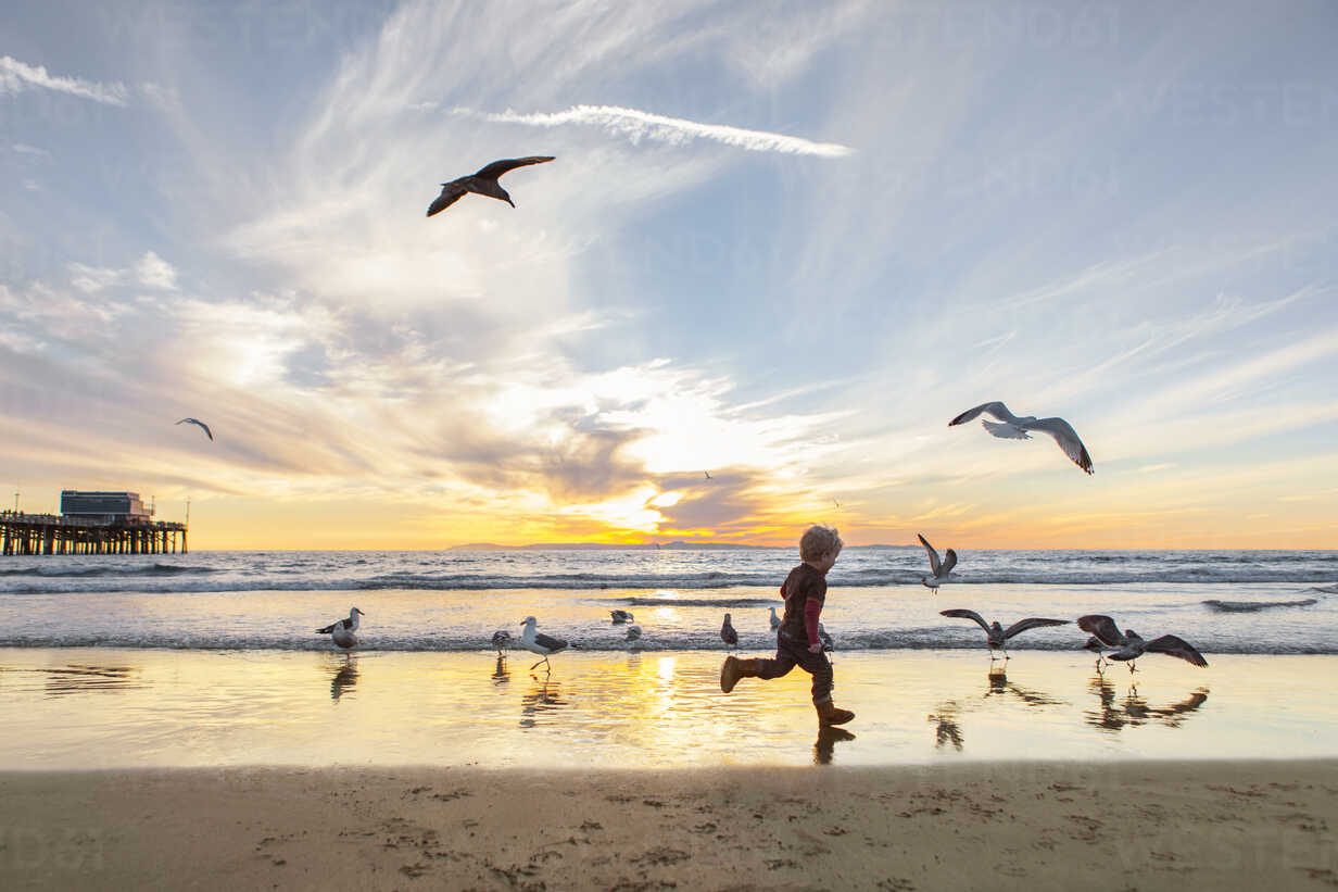 Side view of girl playing with seagulls at beach against sky during sunset - CAVF23515 - Cavan Images/Westend61