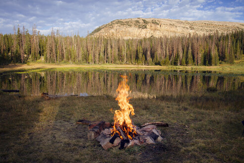 Burning campfire by lake against forest - CAVF24073