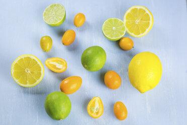 Limes, lemons and kumquats - JUNF01028