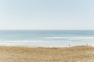 Scenic view of beach against clear sky - CAVF24555