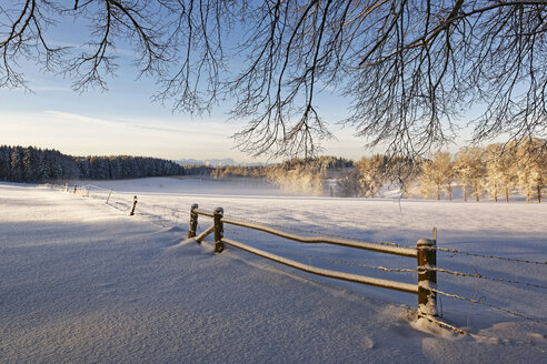 Germany, Bavaria, Geretsried, winter landscape in the morning - LHF00545
