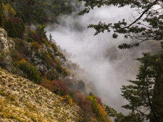 Italy, Umbria, Autumn in the Apennines - LOMF00701