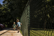 Rear view of brothers walking on footpath by fence - CAVF24779