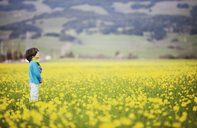 Side view of thoughtful boy standing on oilseed rape field - CAVF25971