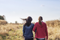 Rear view of sisters walking on grassy field against sky - CAVF26205