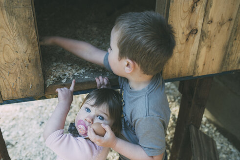High angle portrait of girl pointing towards brother searching for egg in chicken coop - CAVF26676