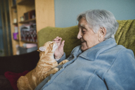 Happy senior woman with tabby cat on the couch - RAEF01987