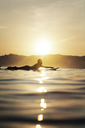Side view of female surfer lying on surfboard in sea during sunset - CAVF26702