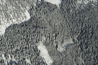 Austria, Salzkammergut, Aerial view of coniferous forest in winter - STCF00511