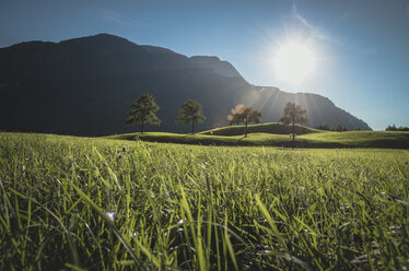 Austria, Bad Ischl, Katrinberg and meadow against the sun - STCF00571
