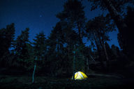 Illuminated tent on field in forest at night - CAVF27291