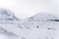 Mid distance view of hiker walking on snow covered landscape during foggy weather - CAVF27330