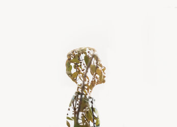 Double exposure of boy and tree against white background - CAVF27510