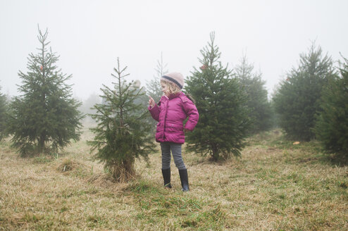 Girl looking at pine tree while standing in farm during foggy weather - CAVF27731